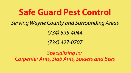 Safe-Guard-Wayne-County-V3
